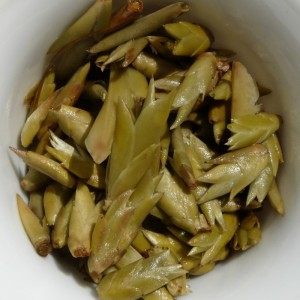 Early-Spring-2014-quotSun-Dried-Budsquot-Wild-Pu-erh-tea-varietal