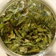Early-Spring-2016-Yunnan-Bao-Hong-Green-tea-3