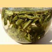 Early-Spring-2016-Yunnan-Bao-Hong-Green-tea-8