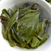Wu-Dong-Chou-Shi-Dan-Cong-Oolong-tea-Spring-2015-1
