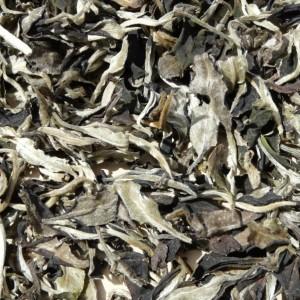 Yunnan-Yue-Guang-Bai-Air-Dried-White-tea-Autumn-2014