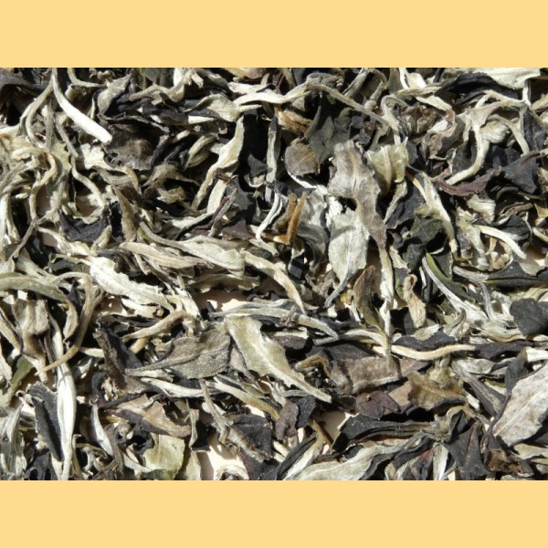 Offering Pu Erh Tea Price Available All Year
