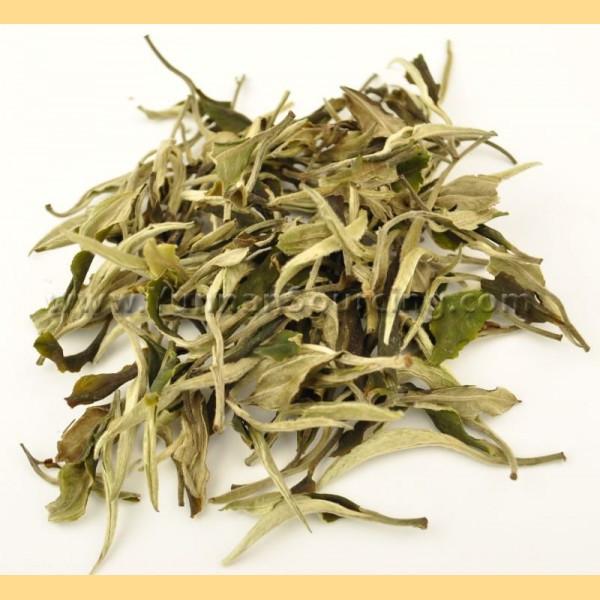 100% natural Dark Tea extract(Pu'er tea extract)/Eurotium Cristatum
