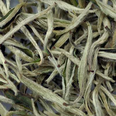 Best Price Royal Green Jasmine Dragon Pearls Tea Benefits